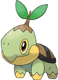 turtwig.jpg